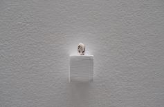 Detalle exposición en LA Galería 2012